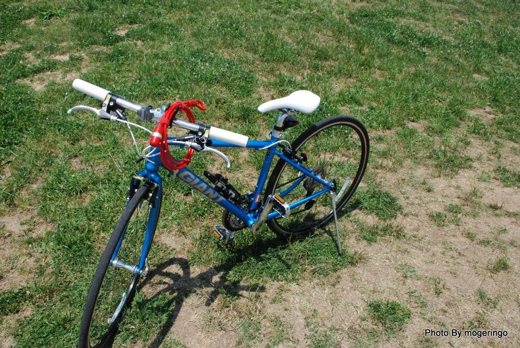 【パーツ】 クロスバイクの必需品 鍵を購入 Proloop Double loop ...
